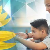 Understanding the Kansas Career Sunflower